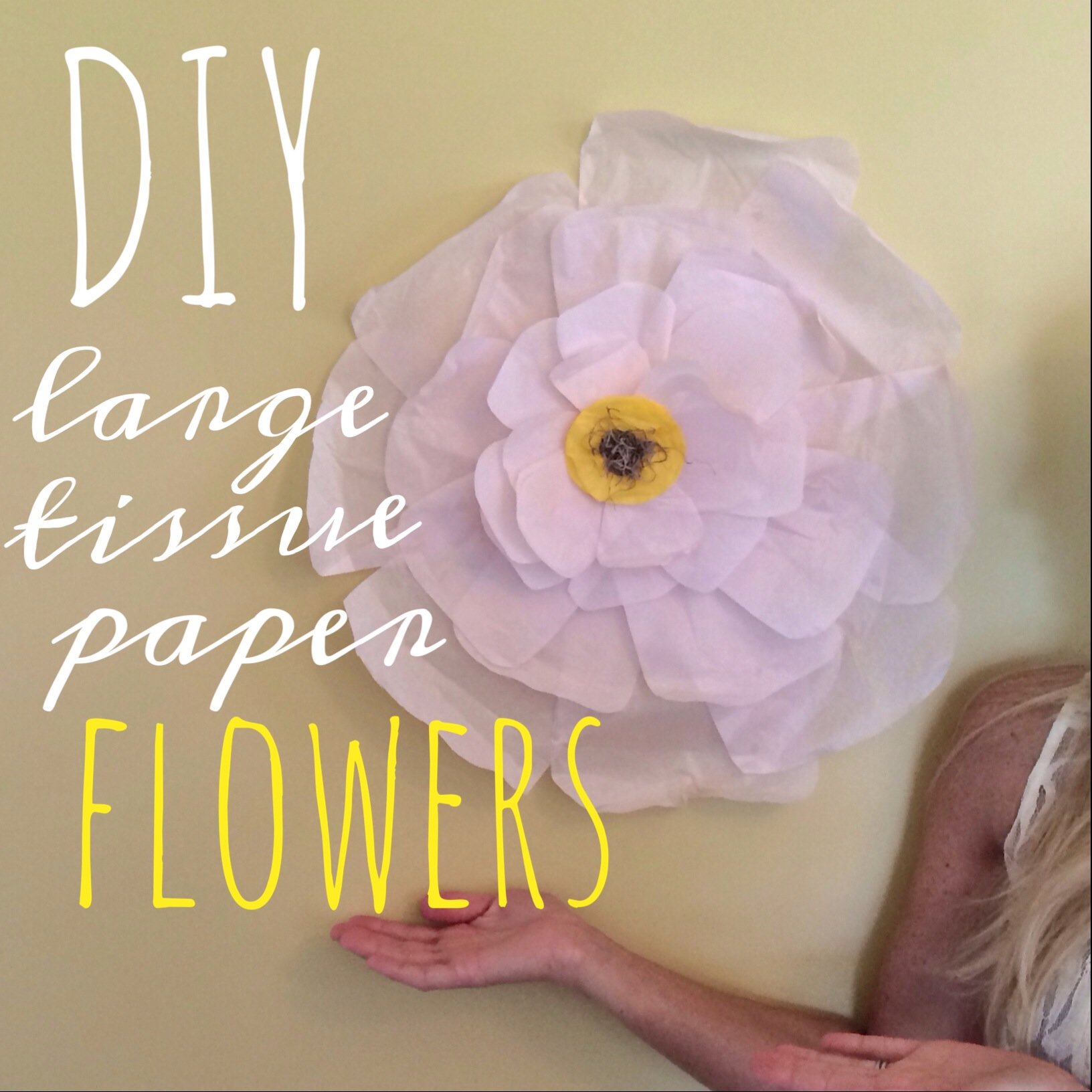 Diy large tissue paper flowers mightylinksfo Images